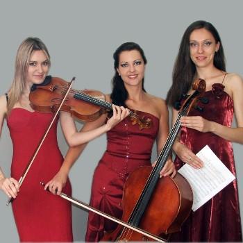 Trio Müzik Grubu